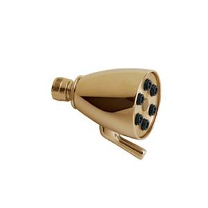 Chicago Faucet - 600-CPB - Polished Brass 6 Jet Shower Head