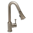 American Standard 4332.300 - Pekoe 1-Handle Pull-Down High-Arc Kitchen Faucet