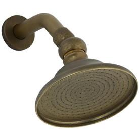 Cifial 289.880.V05 - Sprinkling Can shower head & arm