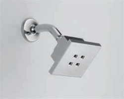 Delta: Contemporary Water-Efficient Showerhead - RP51032