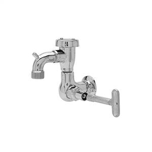 Fisher - 29548 - Single Hole Wall Mounted Faucet SS SHORT SPT