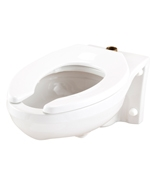 Gerber 25-031 - Elongated Wall Hung 1.6 gpf (6 Lpf) Top Spud Bowl - Spud Bowl with bedpan lugs