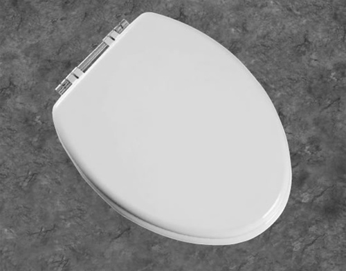 Bemis Next Step Adult Toilet Seat With Integrated Child